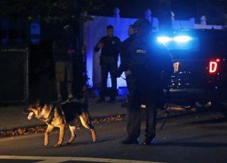 Polícia e Policial Em Inglês